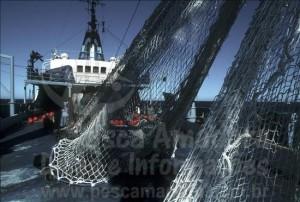 Pesca ilegal afeta o ecossistema marinho
