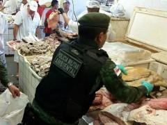 300kg de peixes apreendidos no mercado de Manaus