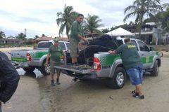 Acao conjunta resulta na apreensao de redes utilizadas na pesca ilegal no RN 2
