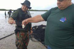 Acao conjunta resulta na apreensao de redes utilizadas na pesca ilegal no RN