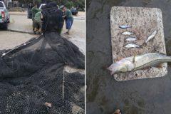 Acao conjunta resulta na apreensao de redes utilizadas na pesca ilegal no RN 3
