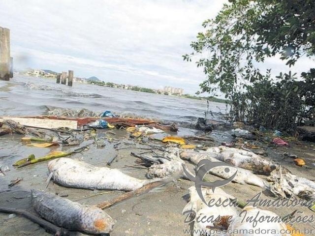 Acidente com a ultracargo atinge pesca em Cubatao-SP
