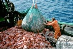 Acordo internacional sobre a pesca ilegal e a sobrepesca 2