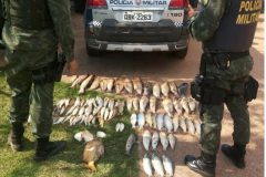 ambiental-prende-quatro-pessoas-e-apreende-40-kg-de-pescado-ilegal-em-mato-grosso