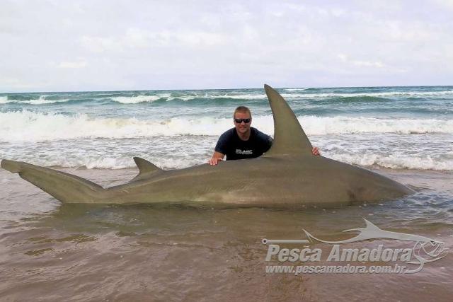 Americano pesca Tubarao-Martelo de quase 4m na Costa do Texas-USA 3