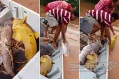 Apos vIdeo viralizar policia autua tres por pesca ilegal em Rondonopolis-MT