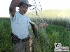 Policial mostra peixes apreendidos ainda na rede (Foto Divulgação: Policia Ambiental)