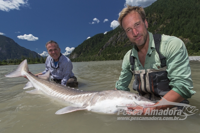 BBC Earth apresenta a maratona de pesca The Big Catch  nesse sabado 2