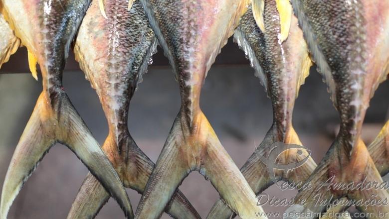 Bacalhau Brasileiro