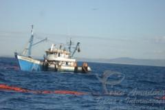 Barco de arrasto de tainha e autuado em 122 mil por pesca ilegal 2