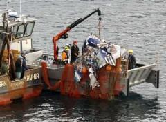 Barco pesca aviao na nova zelandia