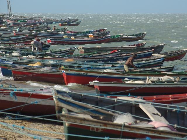 Barcos de pesca serao aceitos como garantia de emprestimo no Profrota