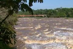 Chuva eleva nivel do Rio Mogi Guacu e favorece piracema em Pirassununga-SP 2