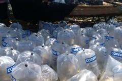 Codevasf insere 300 mil alevinos em trecho do Rio Sao Francisco em Sergipe 2