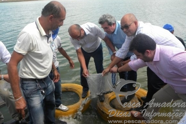 Codevasf realiza peixamento em Arapiraca-AL