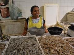 Defeso do camarão em Sergipe