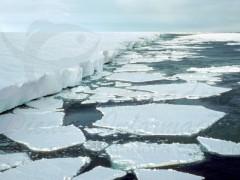 Degelo na Antartida e irreversível segundo a Nasa