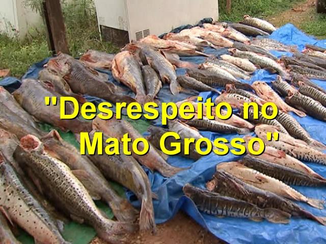 Desrespeito no Mato Grosso
