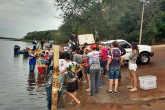 divisao-de-reservatorio-de-itaipu-faz-soltura-de-peixes-em-missal-pr-2