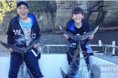 Dois irmaos fisgam atuns na Tasmania e podem bater o recorde Jr 3