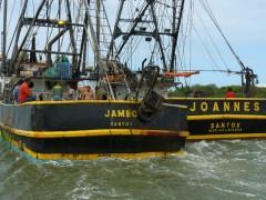 Embarcacoes apreendidas e multadas em Santa Catarina