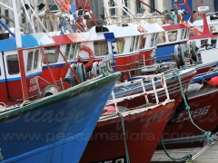 Embarcacoes para pesca de arrasto