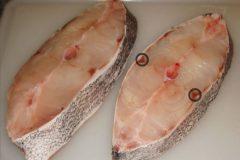 Entenda porque alguns peixes de agua doce exalam ou tem gosto de barro 4