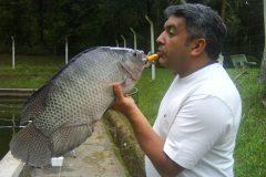 Entenda porque alguns peixes de agua doce exalam ou tem gosto de barro3
