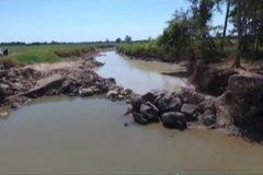 Fazenda constroi canal para desviar agua causando danos ao Rio Araguaia em Goias 4