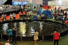 Feipesca 2016 acontece de 10 a 13 de Marco em Sao Paulo 5