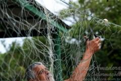 Fiscais apreendem barcos e redes em Florianopolis-SC