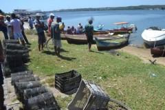 Fiscais apreendem redes e armadilhas em Penedo-AL 5