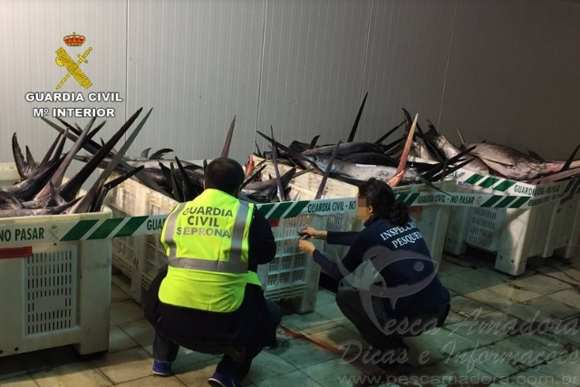 Fiscalizacao apreende 1.500kg de espadarte pescados ilegalmente na Espanha 2