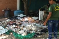 Fiscalizacao apreende 329kg de pescado ilegal no Mato Grosso