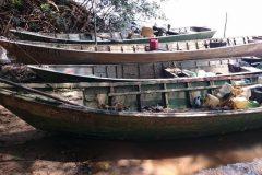 forca-verde-apreende-219-kg-de-pescado-ilegal-provenientes-de-pesca-predatoria-no-rio-parana-pr-2