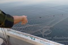 Forca Verde apreende 350m de redes irregulares na represa Capivara-PR 2