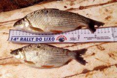 forca-verde-de-umuarama-prende-tres-homens-por-pesca-predatoria-no-rio-parana-3