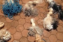 Forca Verde recolhe redes e tarrafas ilegais no Rio Tibagi no PR 4