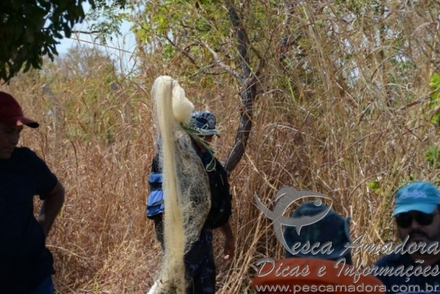 Forca tarefa combate pesca predatoria no Lago de Palmas-TO 5