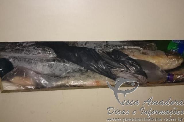 Grupo de brasileiros e preso por pesca ilegal na Argentina 3