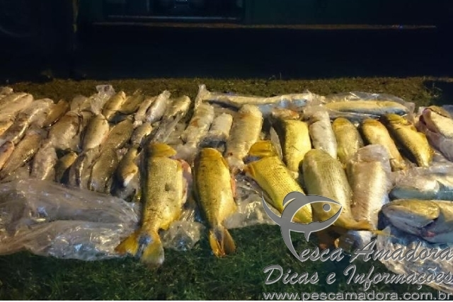 Grupo de brasileiros e preso por pesca ilegal na Argentina