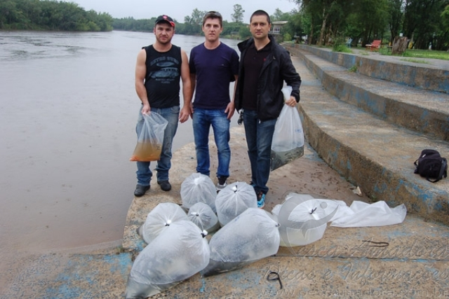 Grupo realiza soltura equivocada de alevinos no Rio Guacu-SP