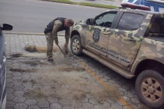 Guarda Ambiental apreende oito redes apos denoncias no Parana