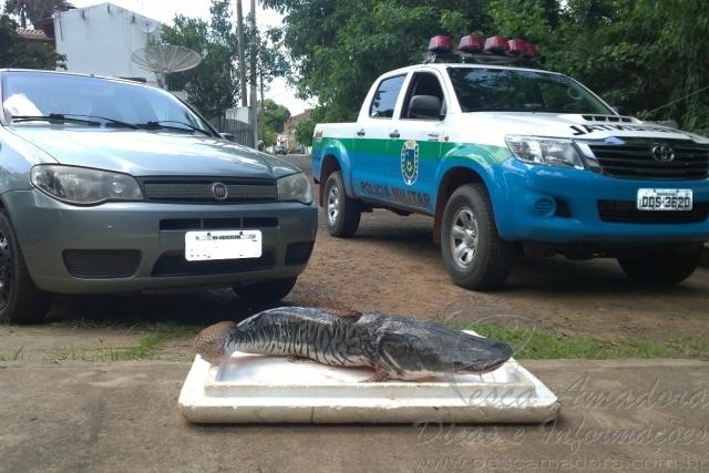 Homem e autuado por transportar pescado ilegal no MS