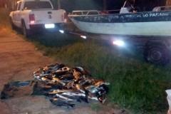 IAP apreende 120 kg de pescado ilegal nos Rio Paranapanema e Porto Rico no PR