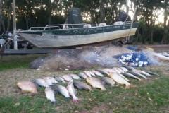IAP aprende 800 m de redes e 60 kg de pescado ilegal no Parana 2