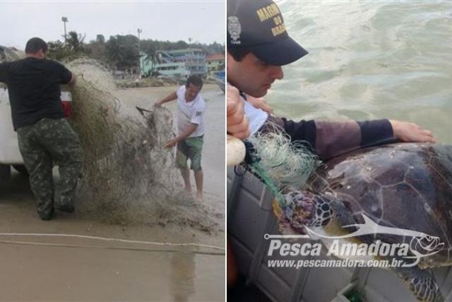 Ibama apreende 12 redes e tartarugas mortas em Marataizes-ES