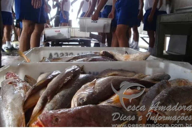 Ibama apreende 30 toneladas de pescado em Belem-PA