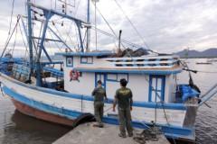 Ibama apreende e doa 16 toneladas de camarao durante o periodo de defeso no Sudeste 2
