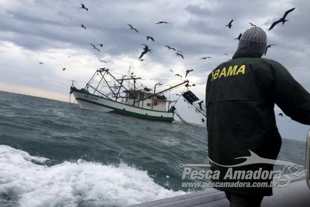Ibama apreende e doa 16 toneladas de camarao durante o periodo de defeso no Sudeste
